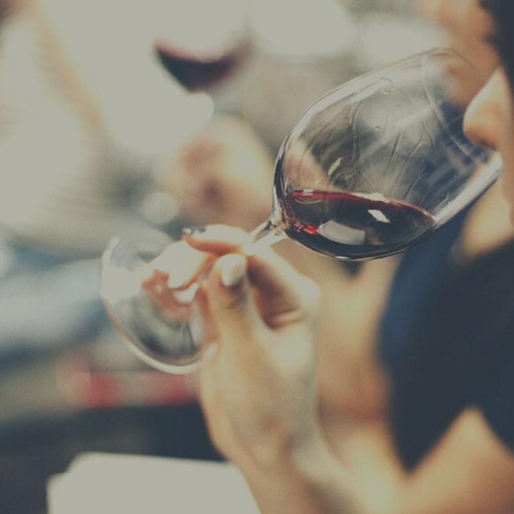 expertise-vin