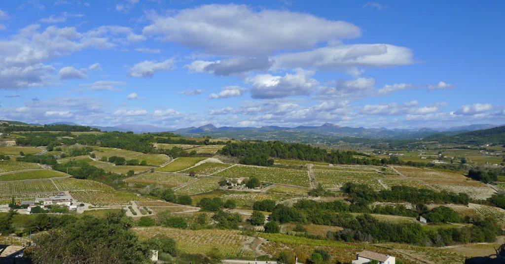les vins nature